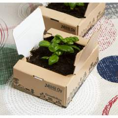 Growth Box Mini Kasvualusta